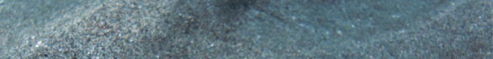 Was ist KI: Kollektiver Irrglaube? 2. Teil einer Fotokollage bestehend aus einem Foto von Theasereje (GNU Licence) und einer Arbeit von form:f - substainable design