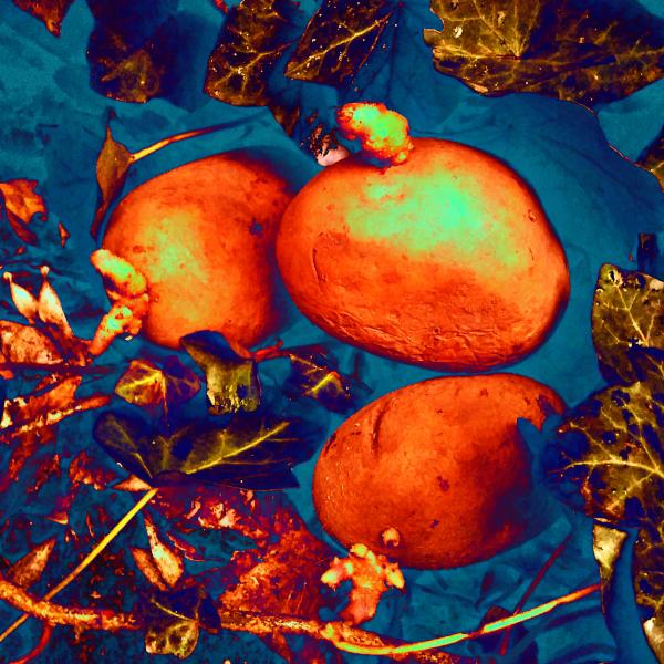 Die Rebounds der AVs, drei Kartoffeln verfremdet, orange + blau / yuyun, form:f - critical design