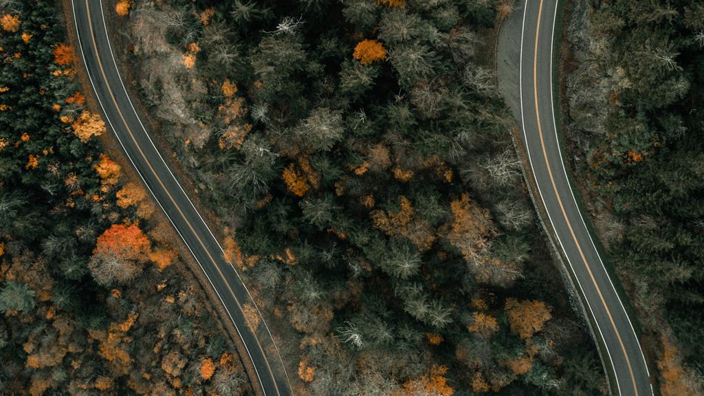 Beamen: Higways in Wald